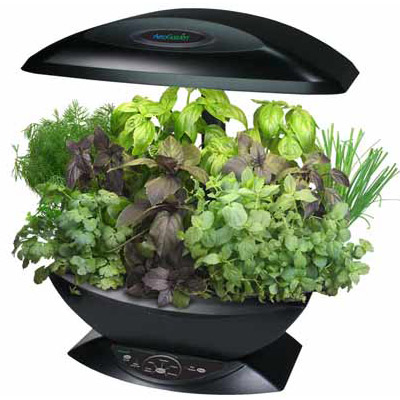 Aerogarden automated indoor kitchen garden the green head for Aero garden com
