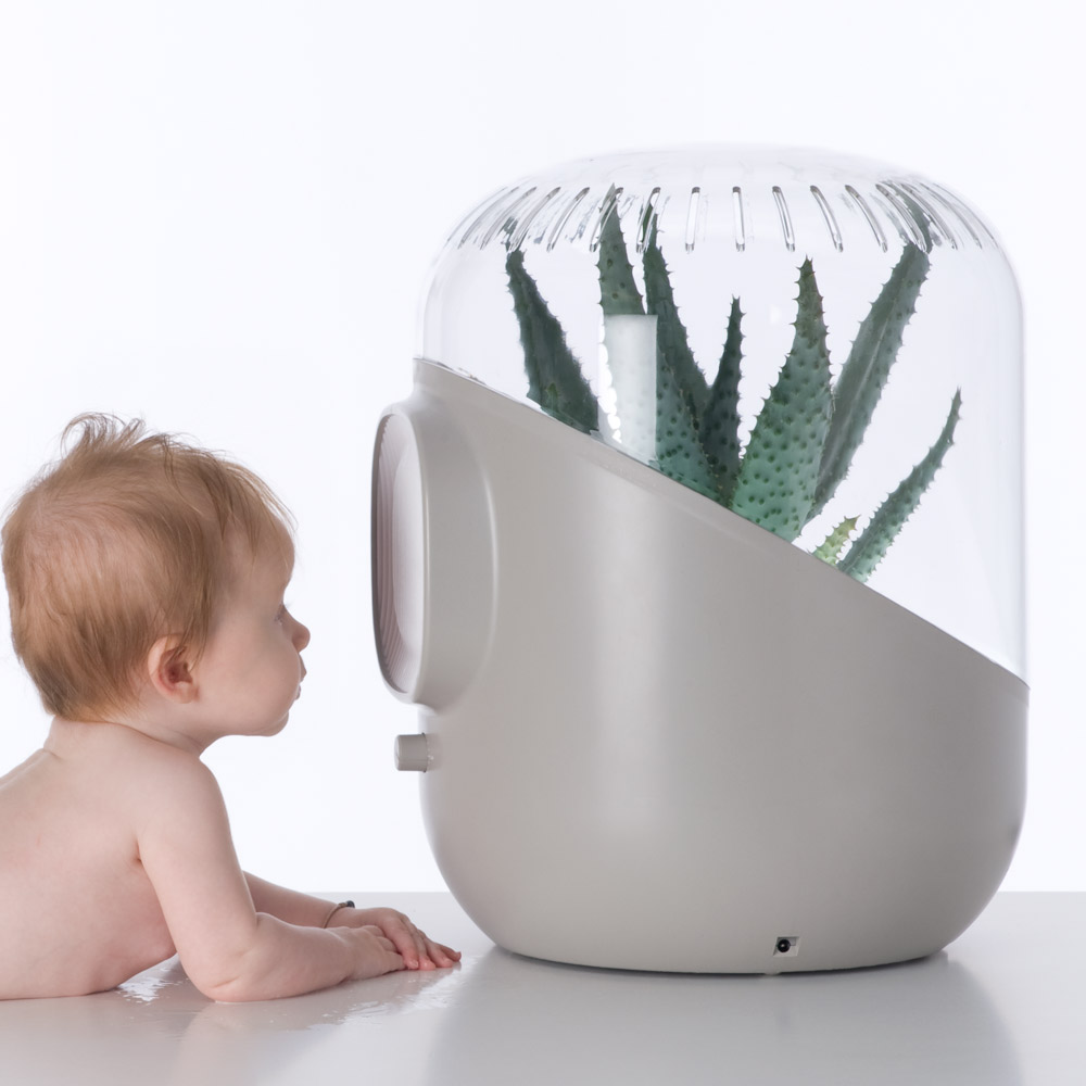 Andrea plant powered air purifier the green head for Filtre waterair
