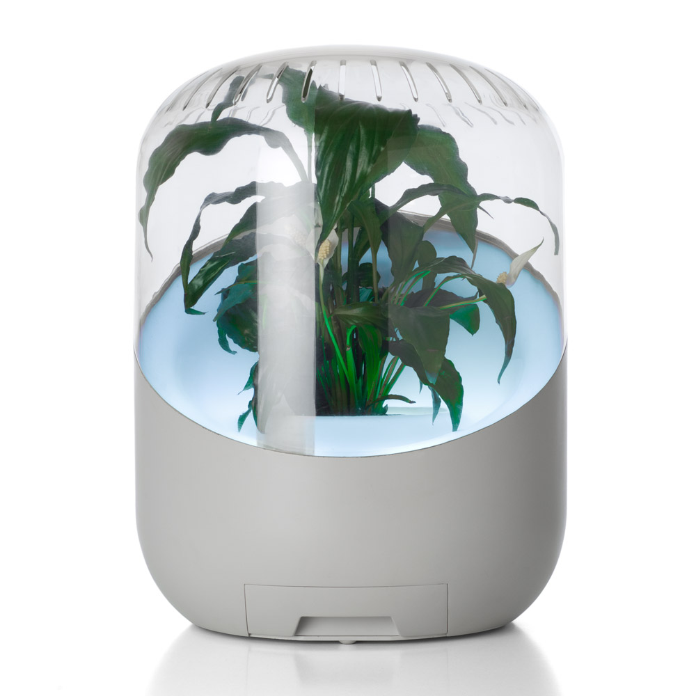 Andrea Plant Powered Air Purifier