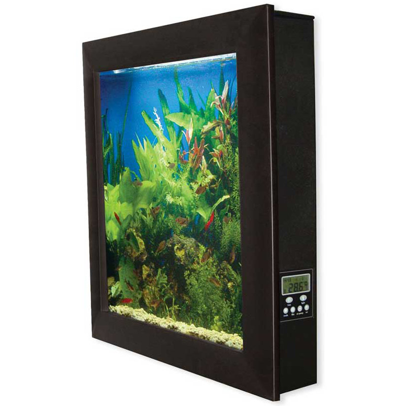 Fish Tank Wall Mounted Aquavista  Wall Mounted Aquarium  The Green Head