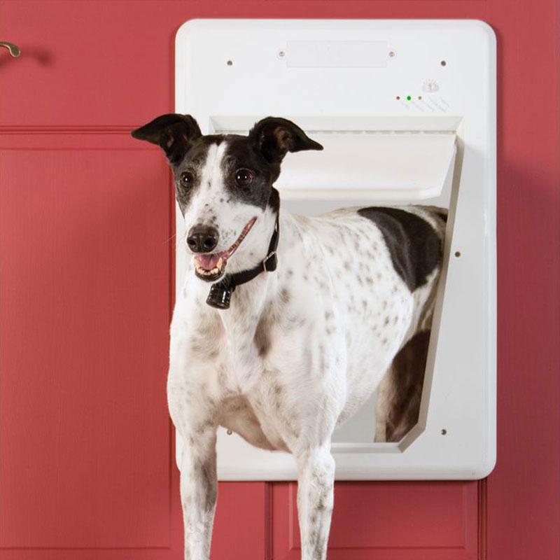 automatic locking pet sensing door the green head With automatic locking dog door