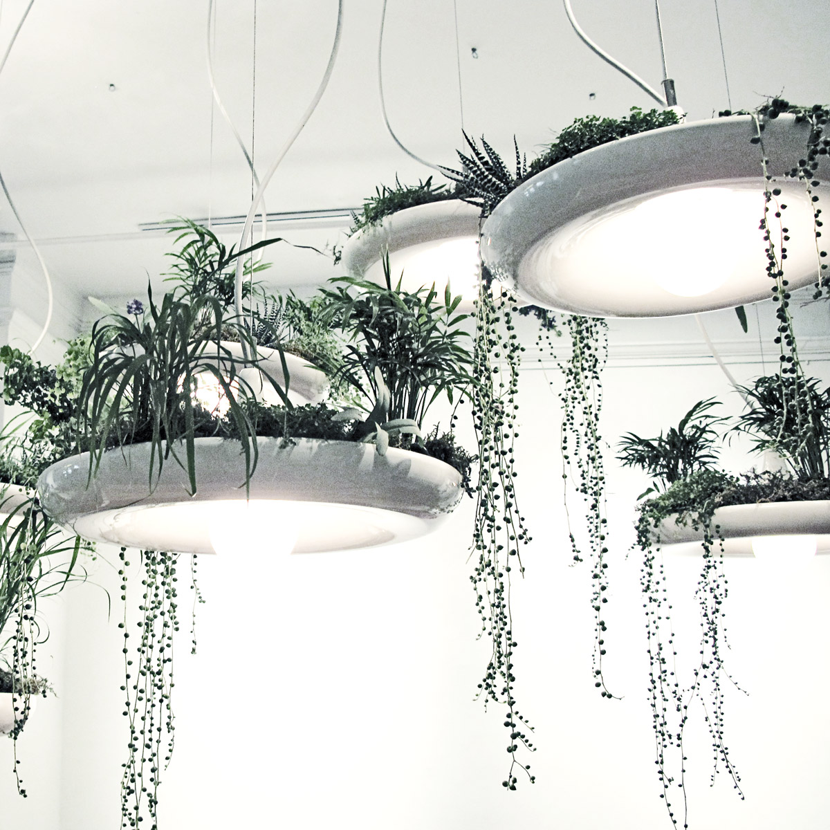 Merveilleux Babylon Light   Hanging Garden Light Fixture