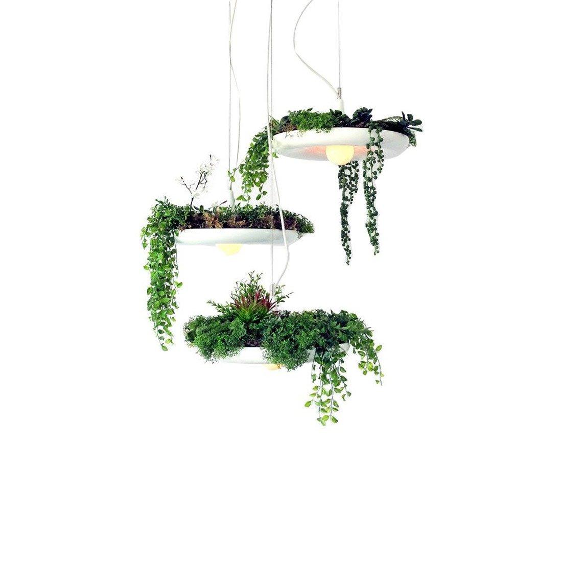 Hanging Light With Planter: Hanging Garden Light / Planter