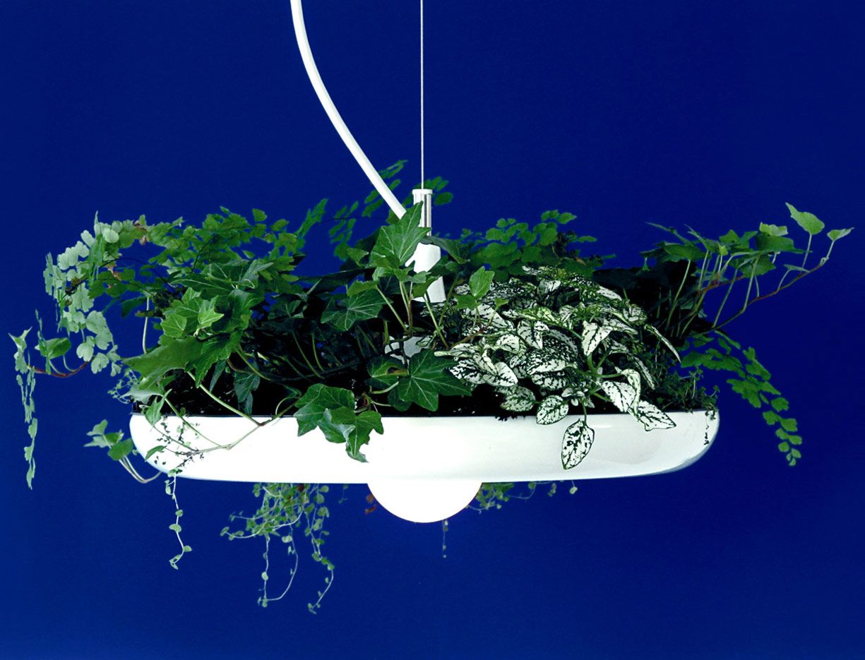 Babylon Light  Hanging Garden Light / Planter