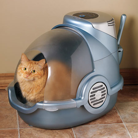 Cat Litter Box Odor Food