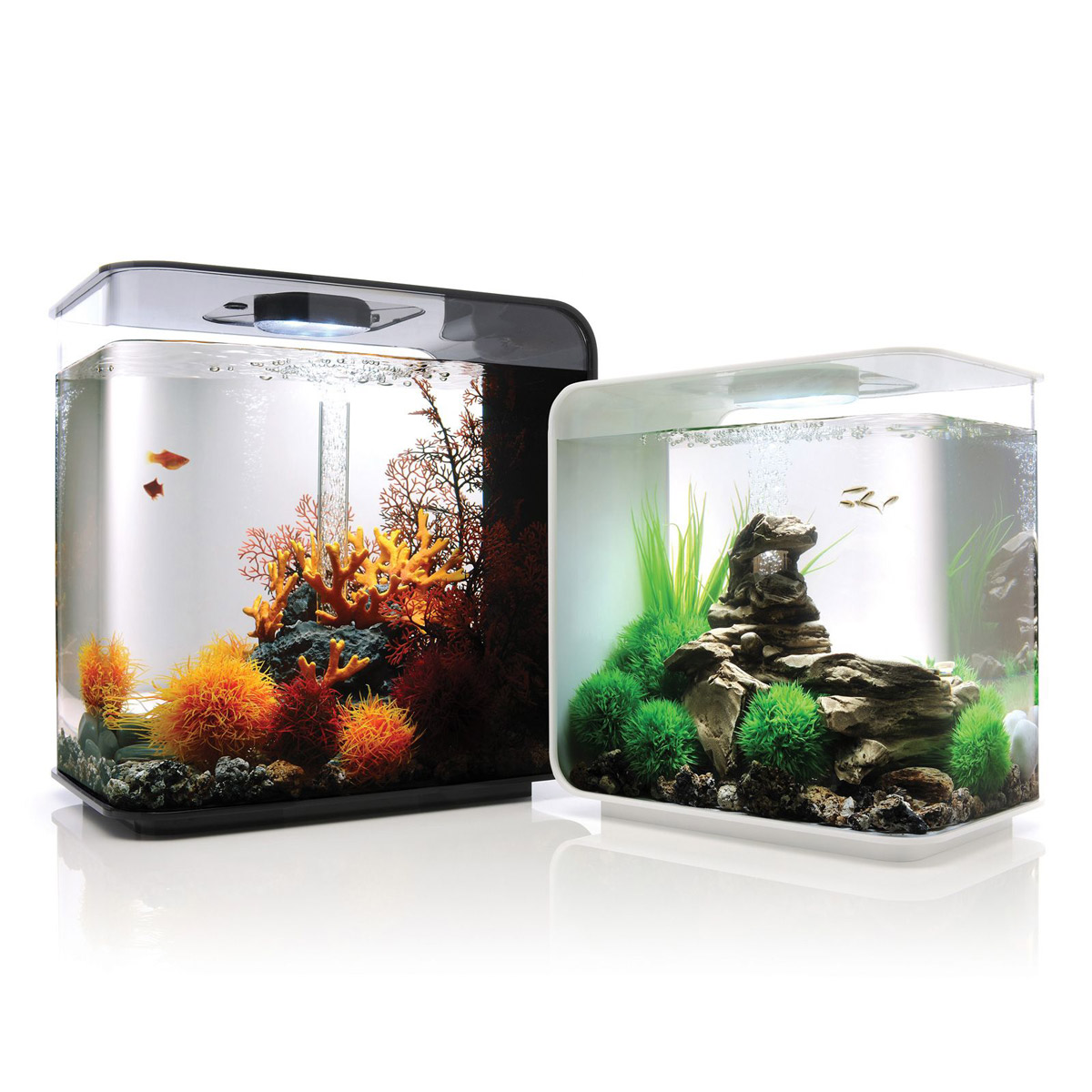 Biorb flow aquarium the green head for Cool small fish tanks