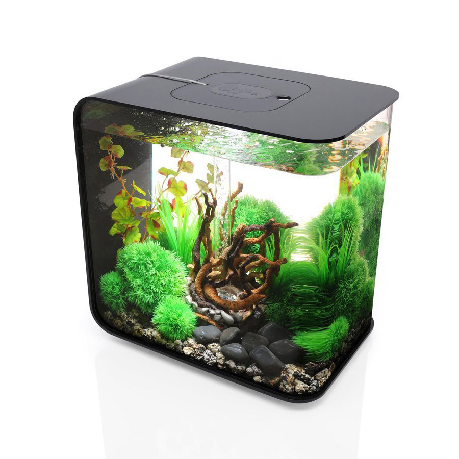 Cool Fish Tanks Small Cool Small Fish Tanks 886x1024 Jpg
