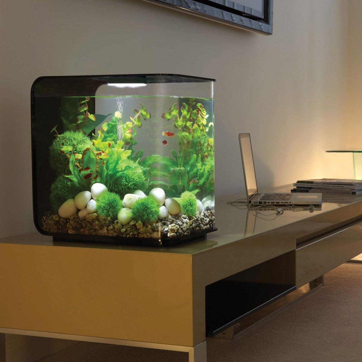 Biorb flow aquarium - Meuble aquarium design ...