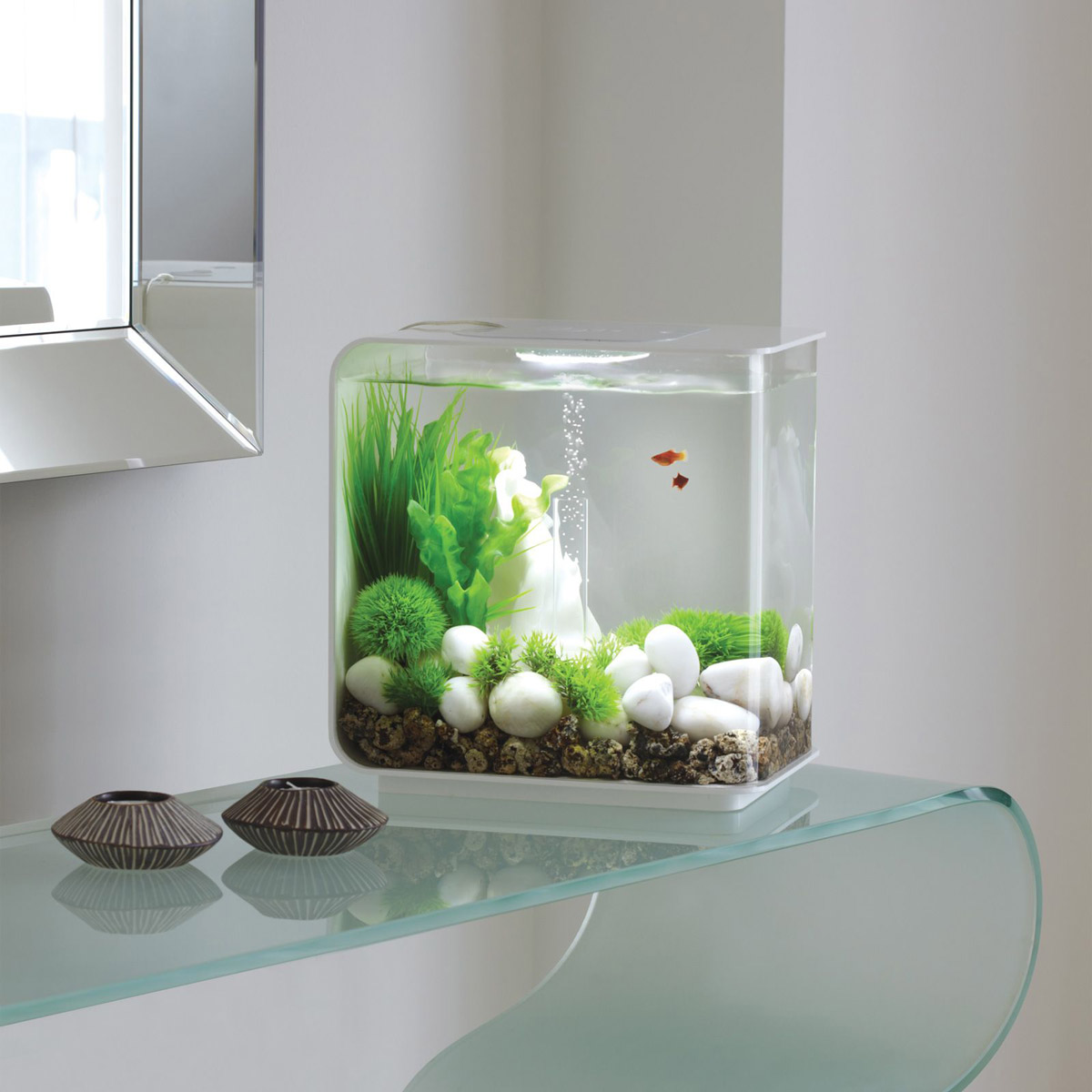 Biorb flow aquarium the green head for Aquarium decoration ideas cheap