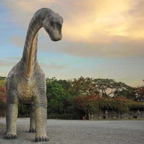 تاريخ الديناصورات معلومات شآملة ..}} camarasaurus-dinosau