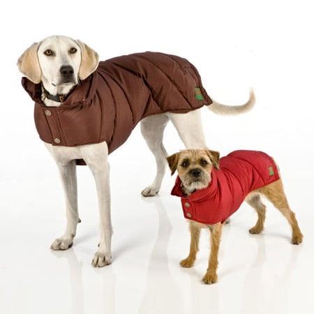 Canine Styles Puffer Dog Coat The Green Head