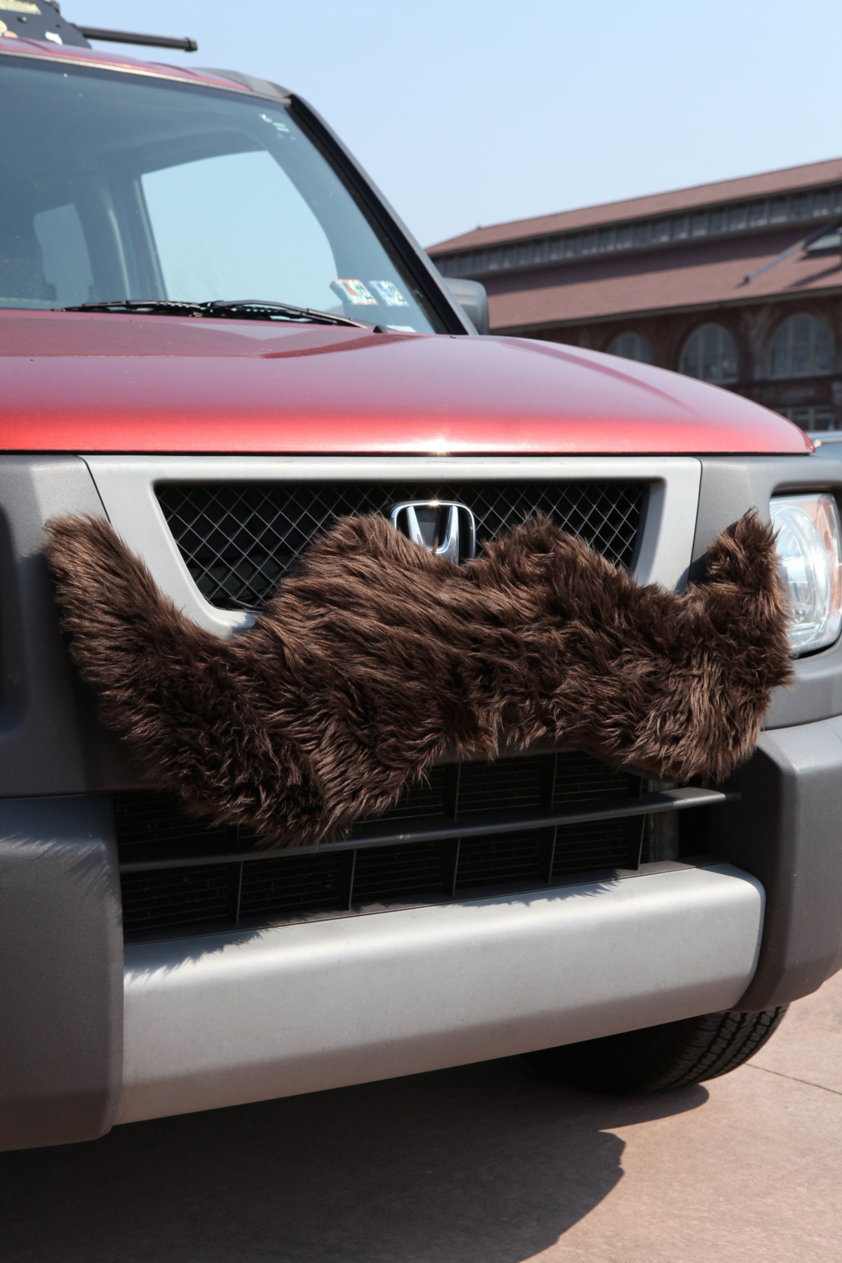 Carstache Furry Car Mustache