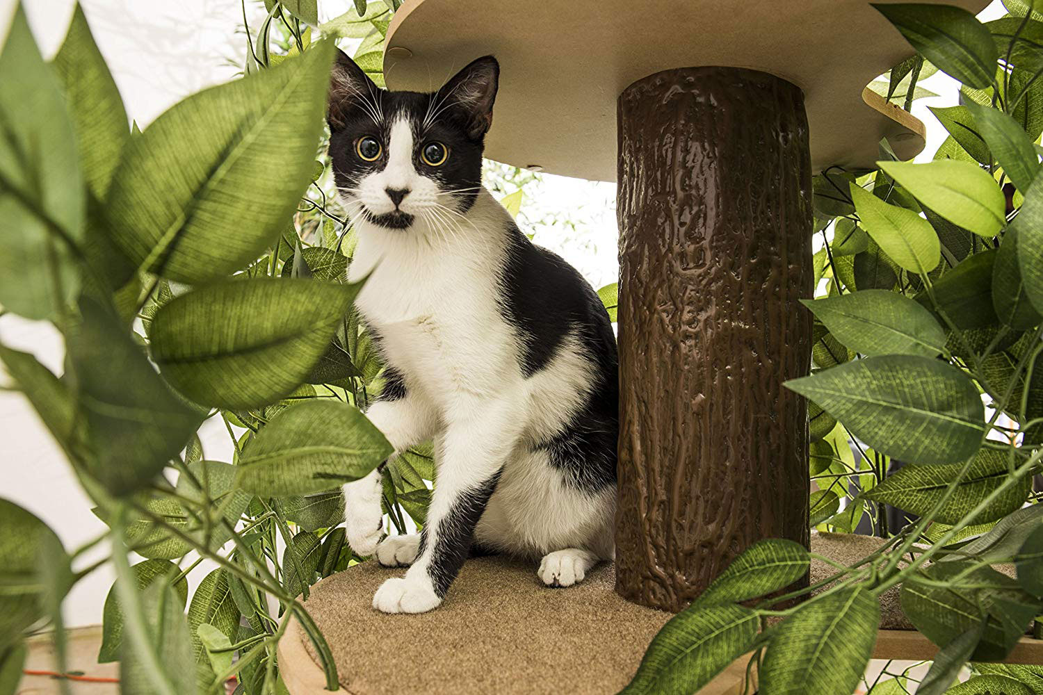 Cathaven Cat Climbing Tree With Leaves