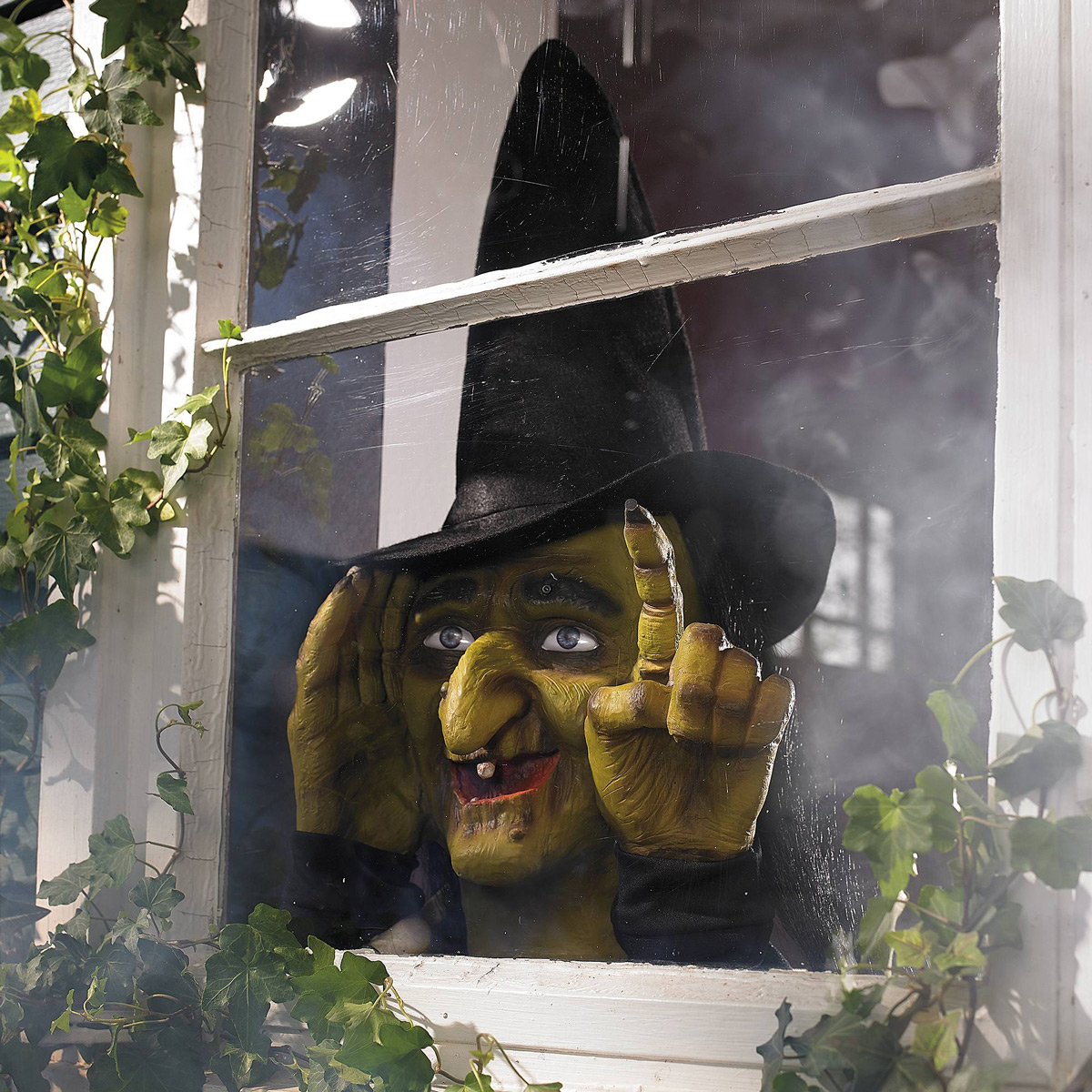 Creepy Animated Window Tapping Witch