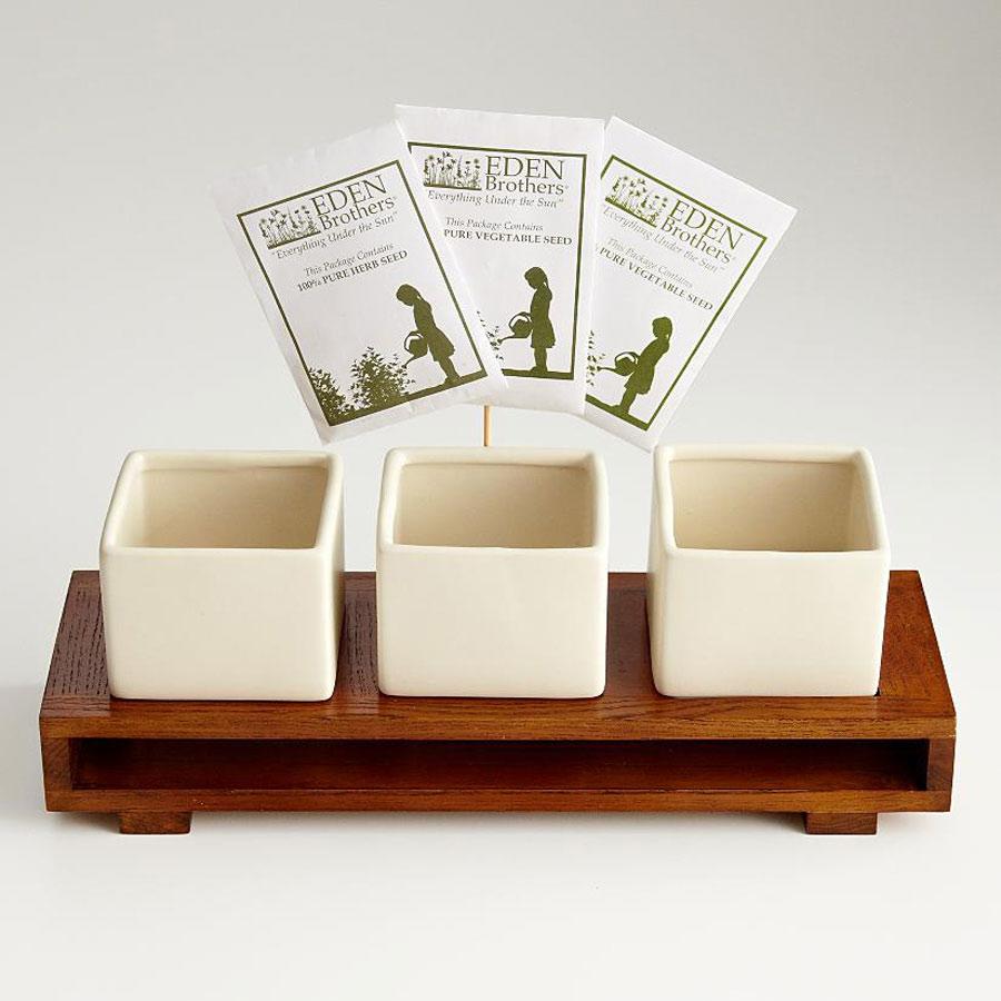Culinary Salsa Growing Kit