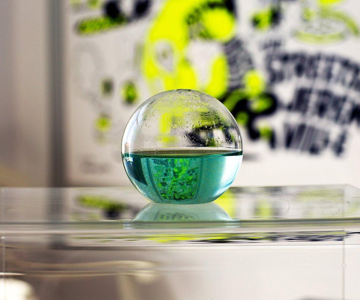 Hot Tub Hammock >> Dino Sphere - Bioluminescent Plankton Mini Aquarium - The ...