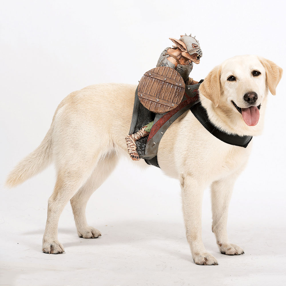Dog Riders Pet Costume...