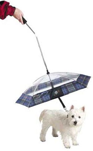 dog Umbrella Hat - ShopWiki