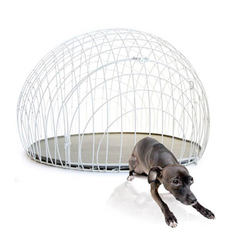 eicrate modern dog crate the green head