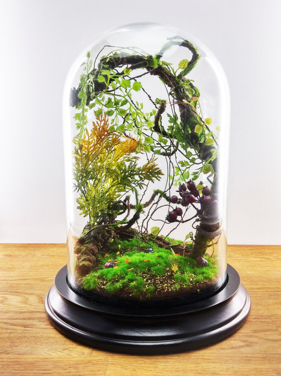 enchanted forest terrarium domes the green head. Black Bedroom Furniture Sets. Home Design Ideas