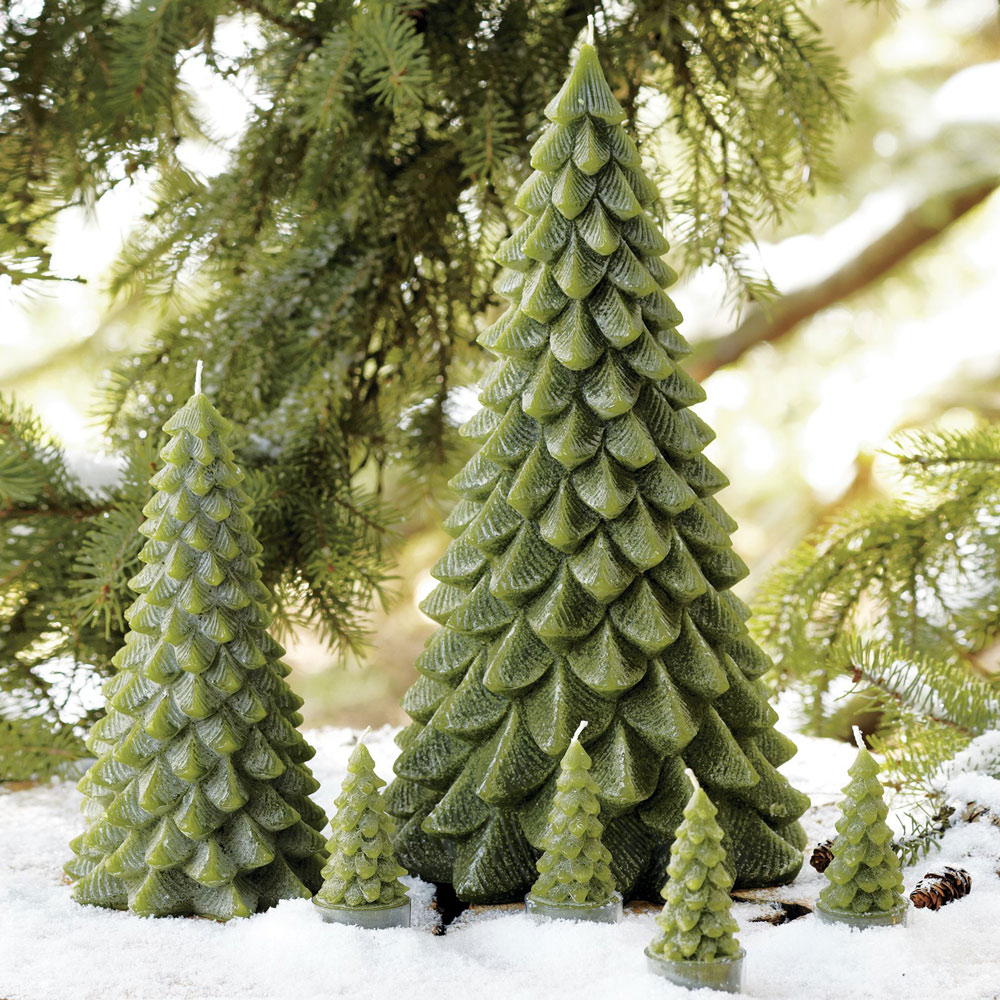 Evergreen Tree Candles The Green Head