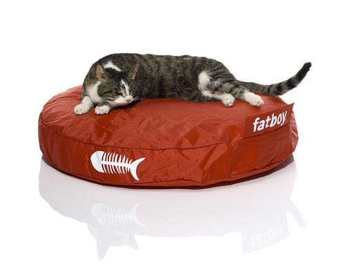 Fatboy catbag ultimate kittie bean bag the green head - Pouf imitation fatboy ...