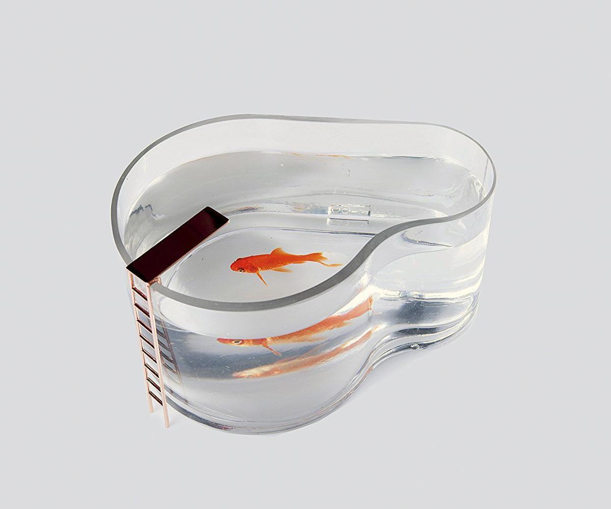 Fishpool aquarium betta fish swimming pool with diving for Raising fish in a swimming pool