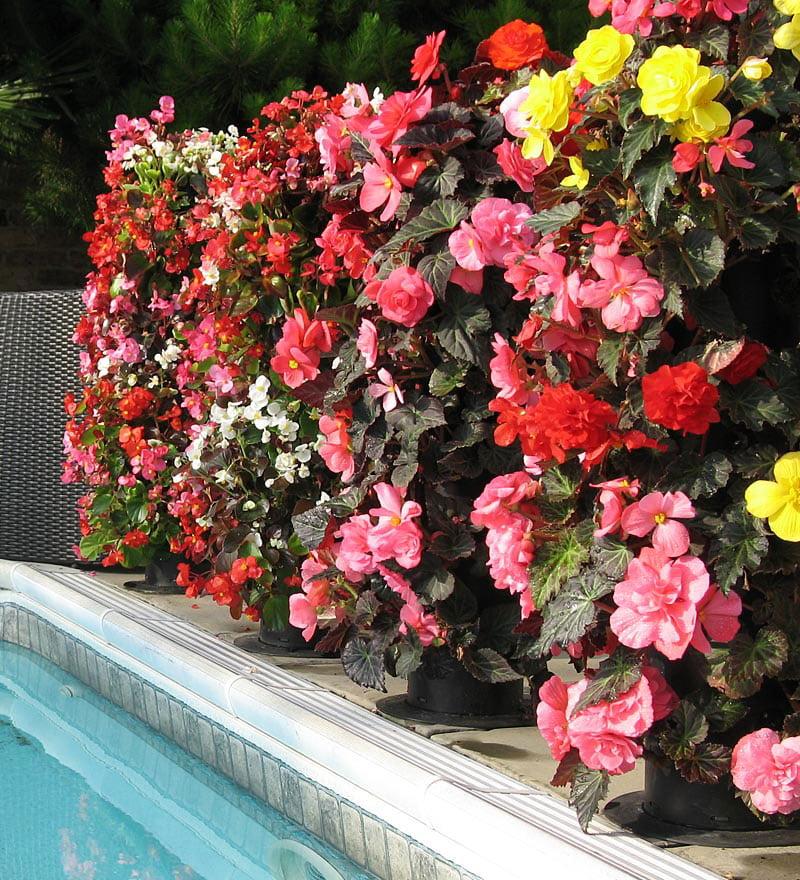 Flower tower freestanding vertical planter the green head for Flower wall garden