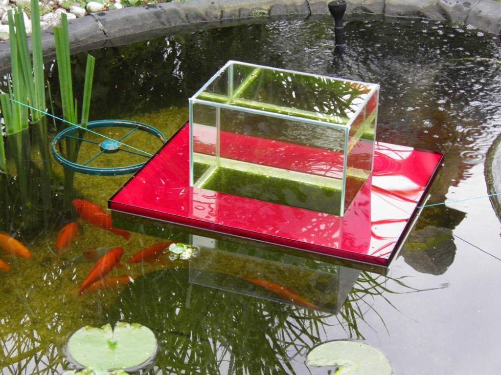 Flying aquarium above the water floating koi goldfish for Portable koi pond