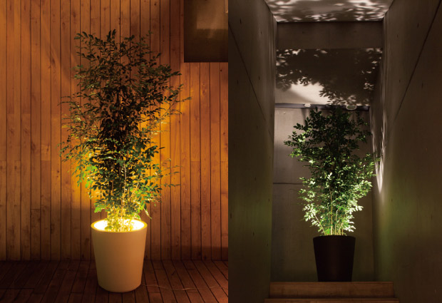 Forestarium Illuminated Planter The Green Head