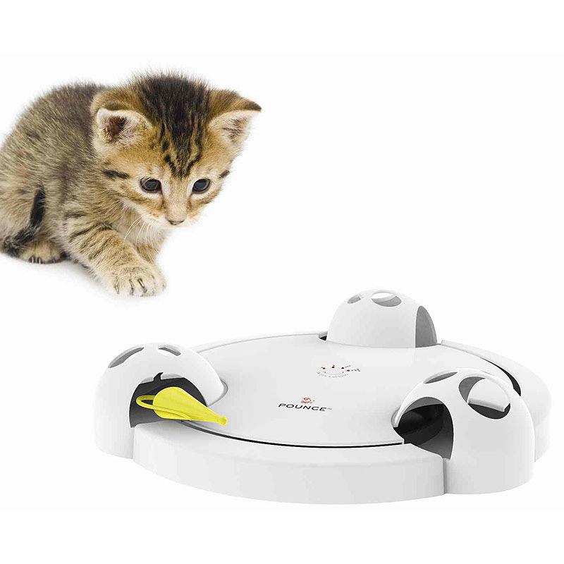 Fun Interactive Cat Toys