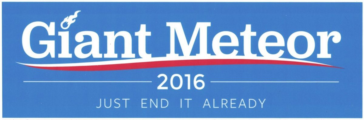Election Bumper Sticker