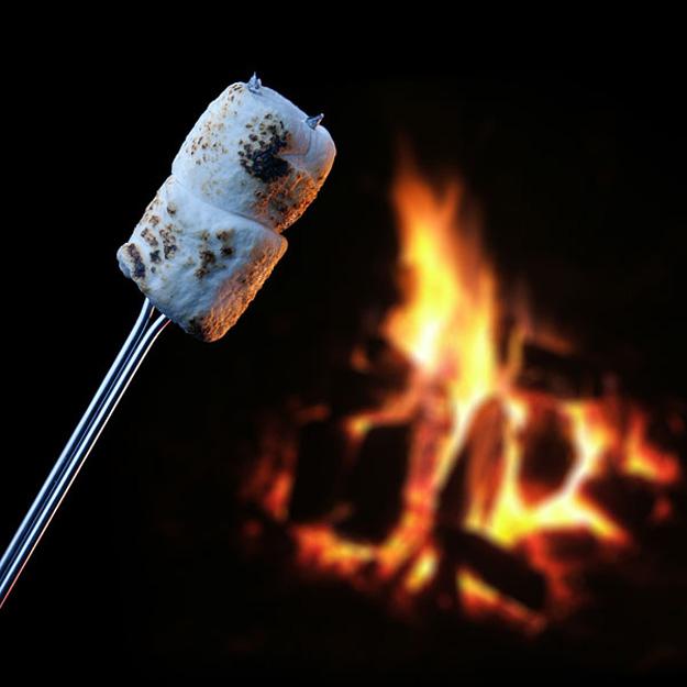 Glow In The Dark Campfire Roasting Sticks The Green Head