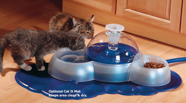 Hagen Catit Drinking Fountain Dome The Green Head