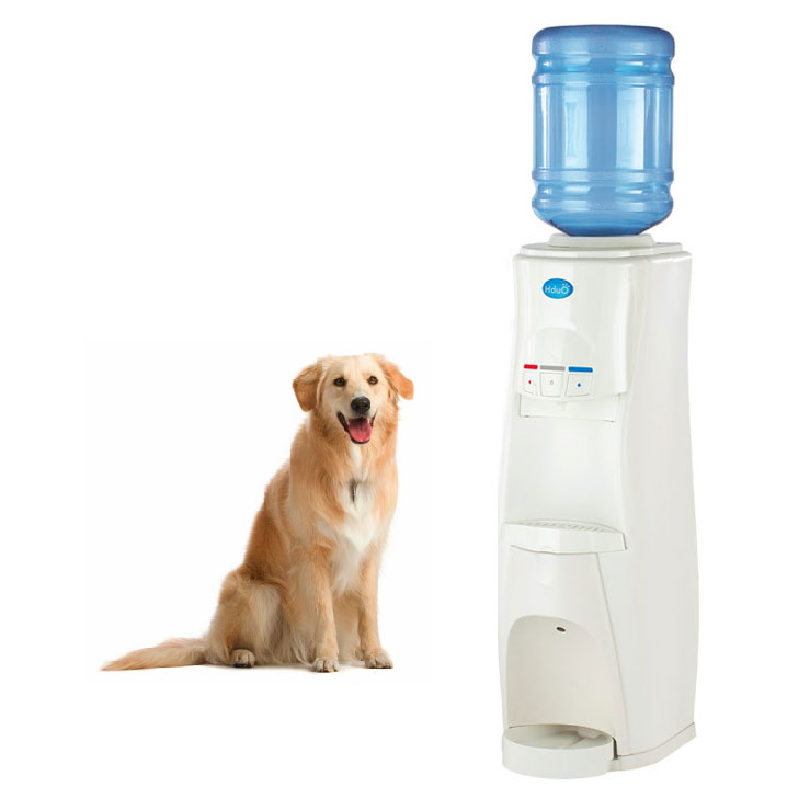 HduO - Water Dispenser for People and Pets - The Green Head