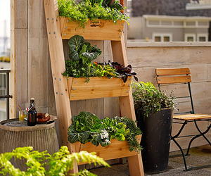 3-Tier Vertical Wall Garden
