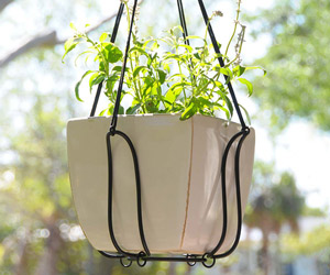 Adjustable Plant Hanger - Turns Almost Any Pot Into a Hanging Planter