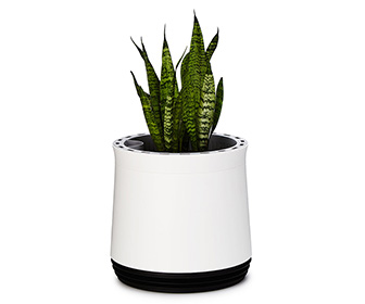 AIRY Air Purifying Planter