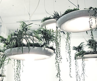 Babylon Light - Hanging Garden Light / Planter