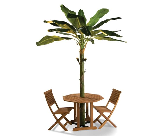 Banana Leaf Patio Umbrella Tree