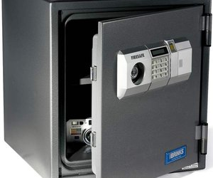 Biometric Access Safe
