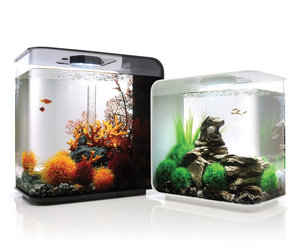 Electronic goldfish in a bowl the green head for Spacearium aquariums