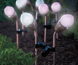 Blossoming Solar Lights