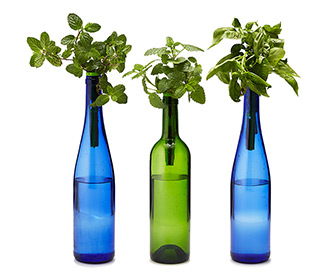 Bottle Stopper Hydroponic Herb Garden Kit