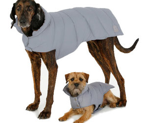 Canine Styles - Puffer Dog Coat