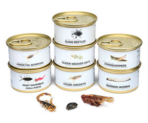 Canned Edible Bugs