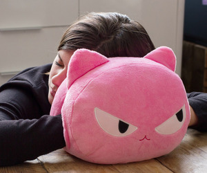 Cat Nap Pillows