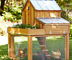 Cedar Chicken Coop and Run with Garden Planter