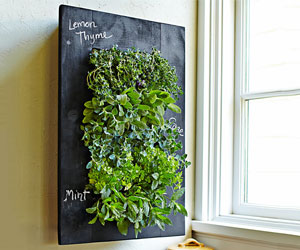 Chalkboard Vertical Wall Planter
