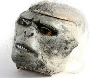 Chilled Monkey Brains - Authentic Prop Head from Indiana Jones And The Temple Of Doom